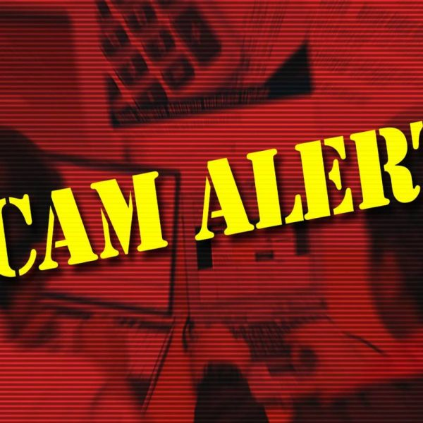 RM150,000 lost to 'angpow' scammer
